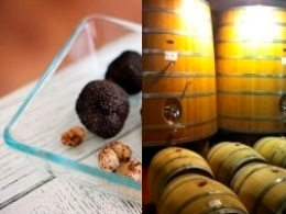 Truffle hunting and winery tour in Tuscany