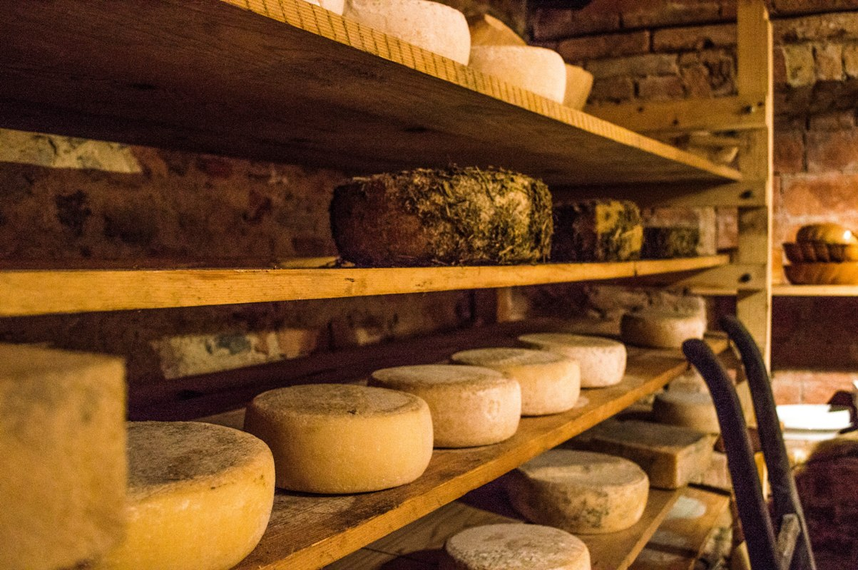 Ageing biodynamic cheese