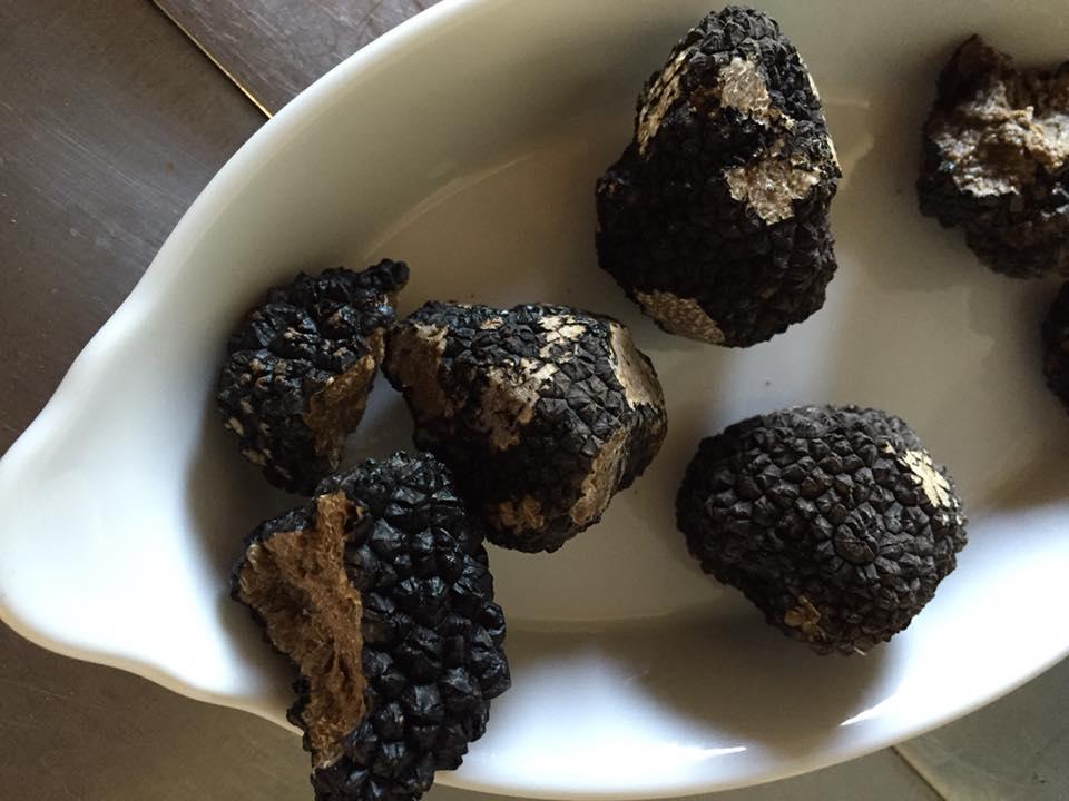 Scorzone black truffles