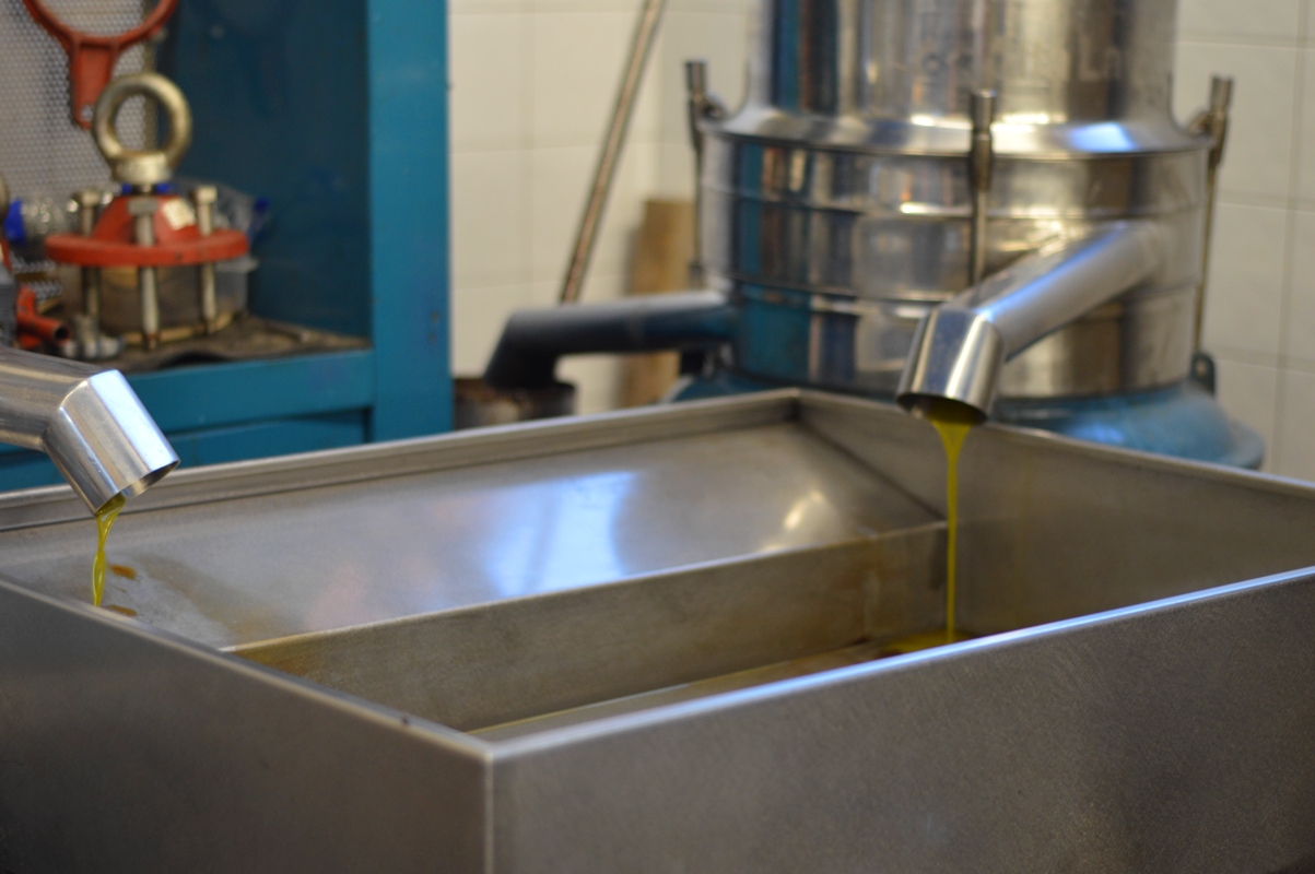 Olive oil from the tap