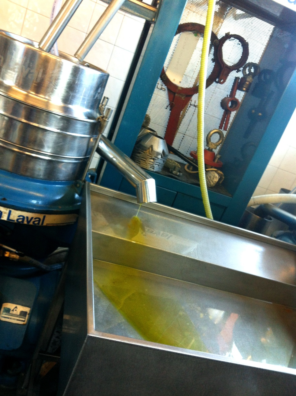 A stream of olive oil