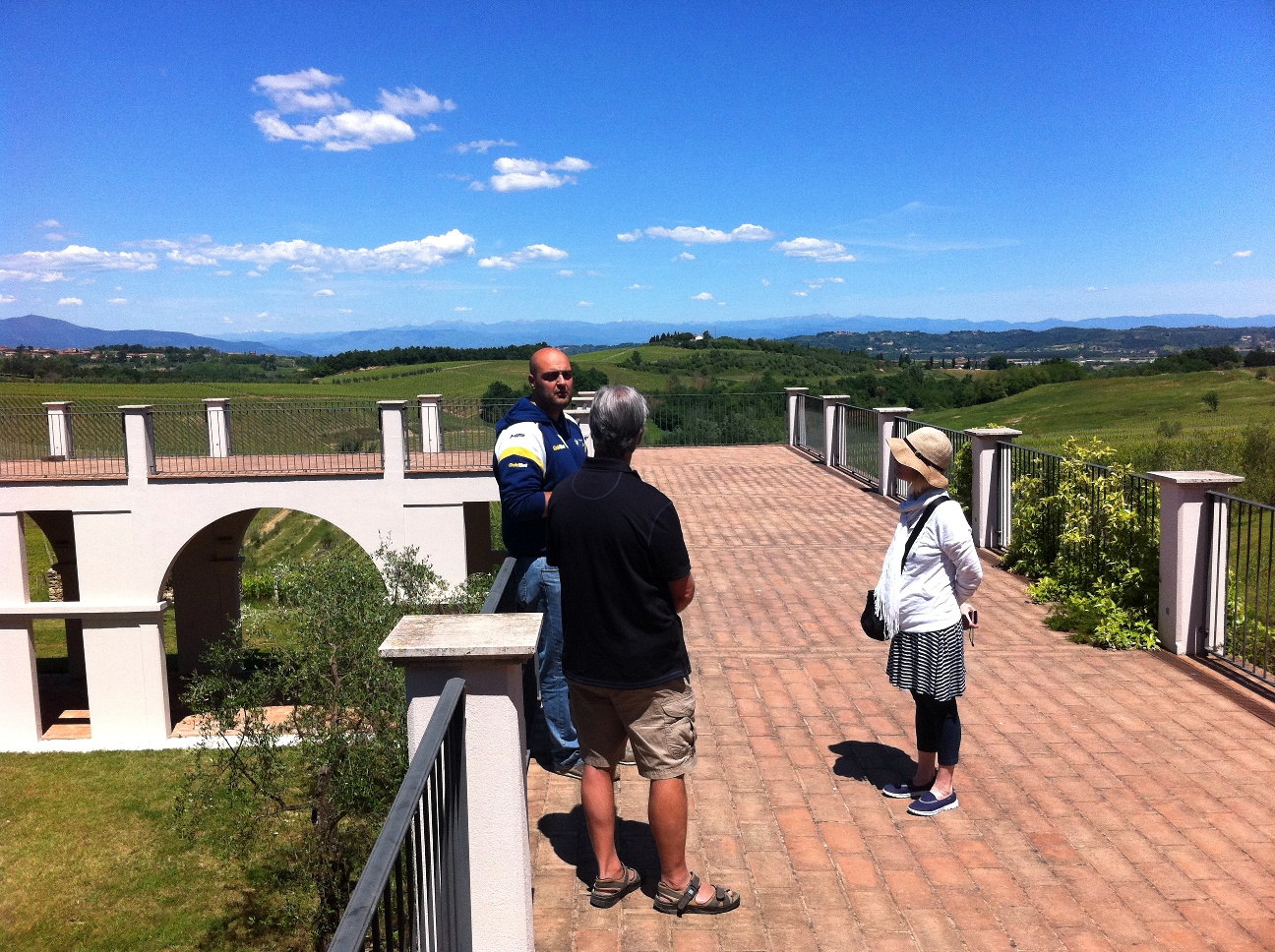 A walk in the terrace of a winery