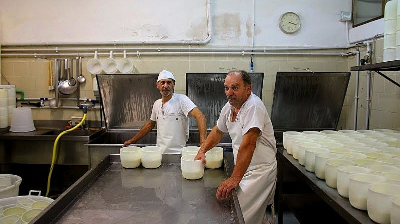 Tuscan cheese makers