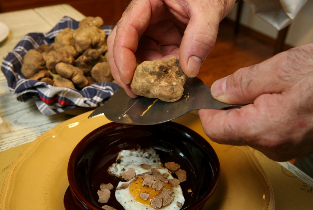 White truffle on eggs