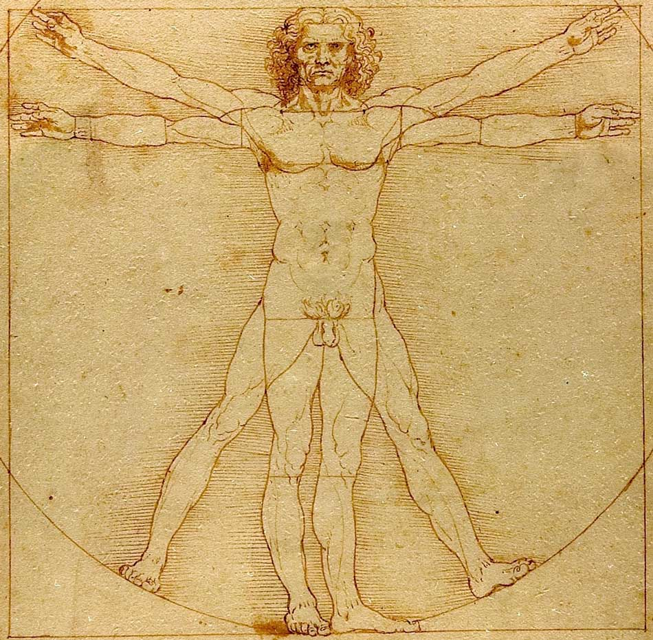 The vitruvian man by Leonardo