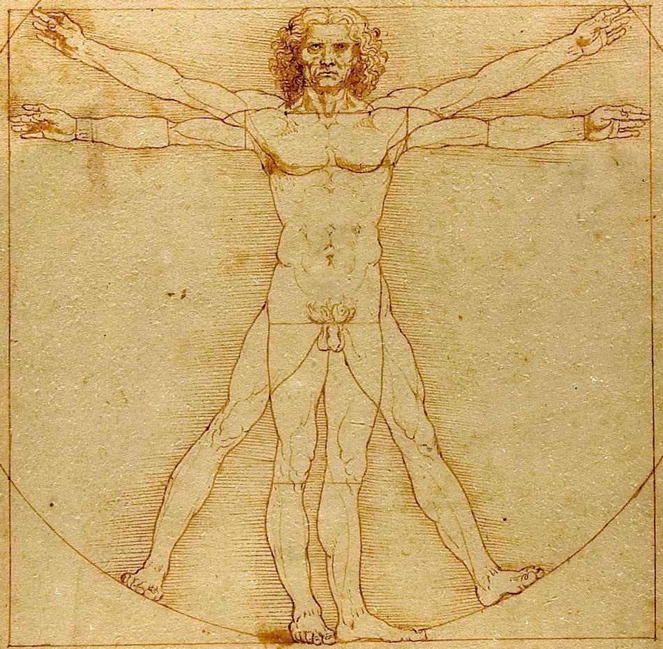 The vitruvian man by Leonardo
