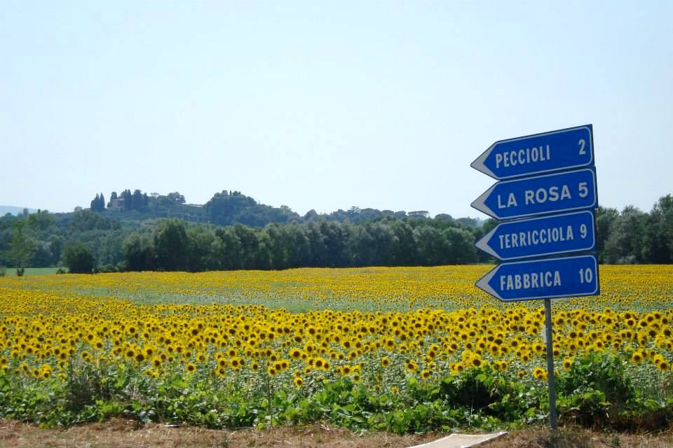 Roads signs of Italy
