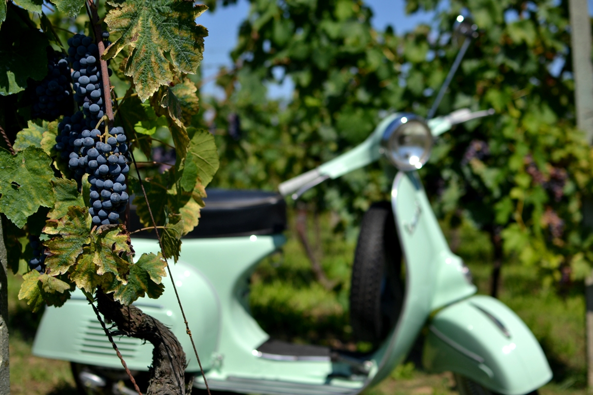 Vespa tours at Tuscan wineries