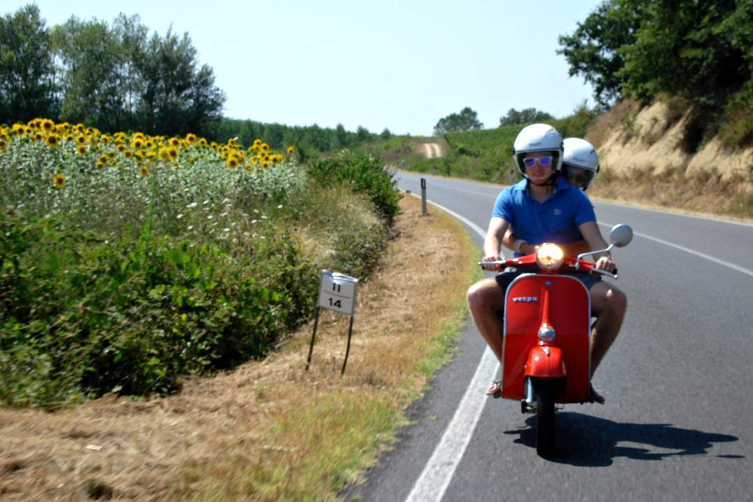 Vespa tours and sunflowers fields
