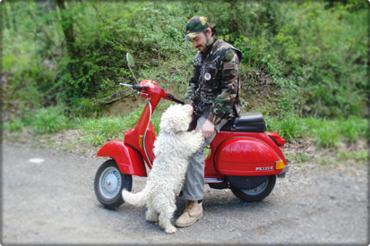 Vespa tour with truffle hunting session