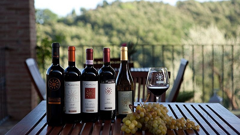Excellent wines produced at an agriturismo near Volterra