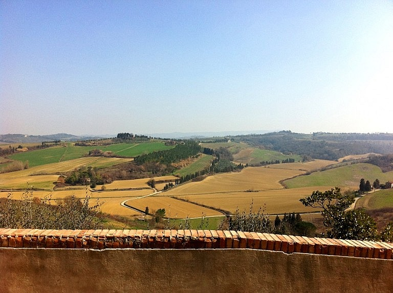Charming view over fields and vineyards from Peccioli