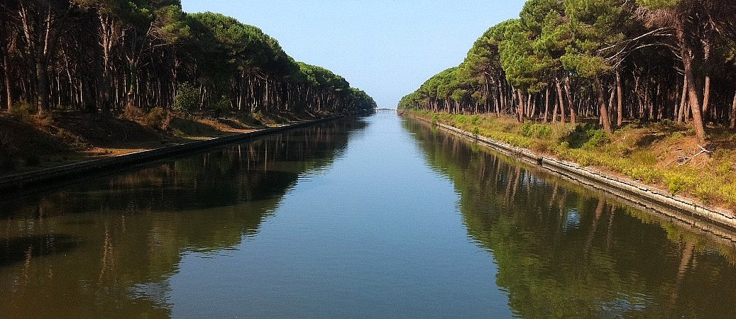 Canal in the nature reserve of San Rossore