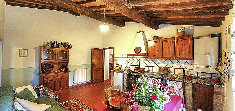 Rustic style kitchen