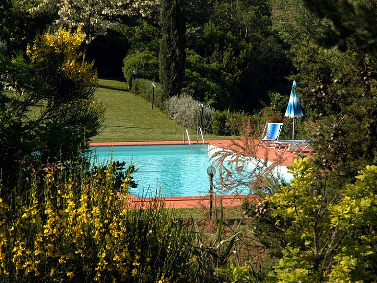 Pool in the park of Tuscan vegetation