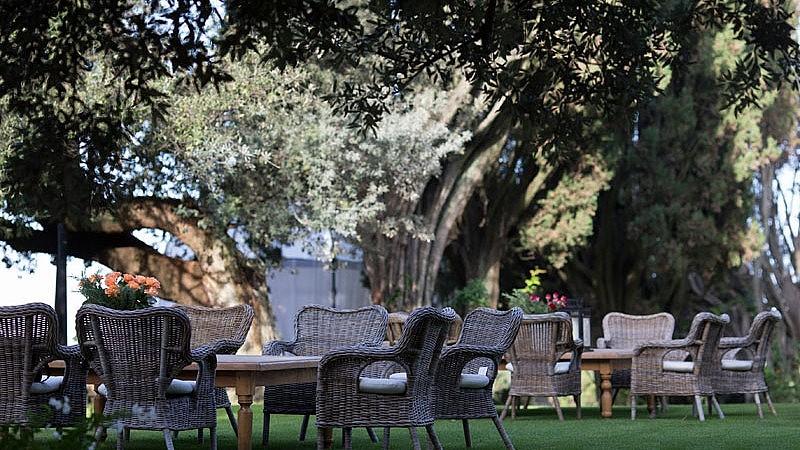 Lounge in the garden under oak trees