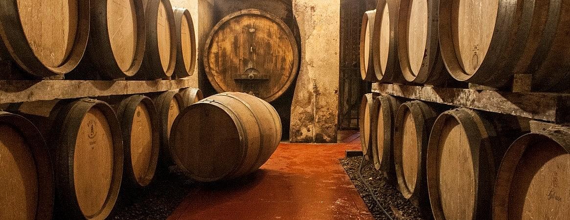 Barrique room in the old cellar of Tenuta di Ghizzano