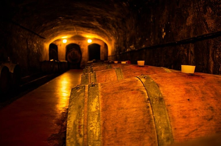 Dark ageing tunnel where barriques are lined up