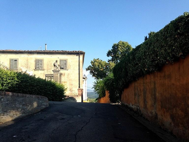 The driveway to the cellar Tenuta di Ghizzano