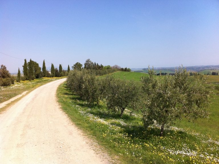 Tuscan scenery for biking routes