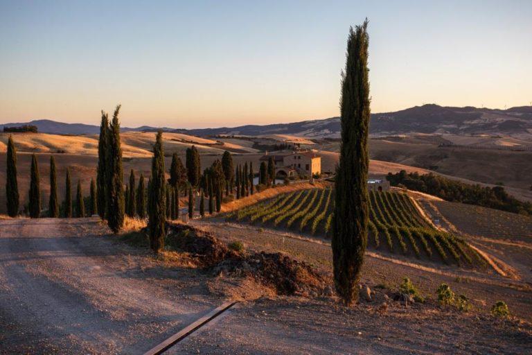 Wine tasting at a dream farm in Tuscany