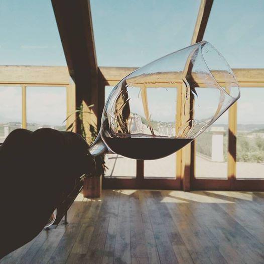 Terre di Pisa wine