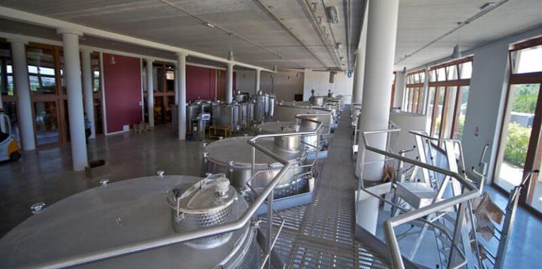 Modern wine cellar near Peccioli