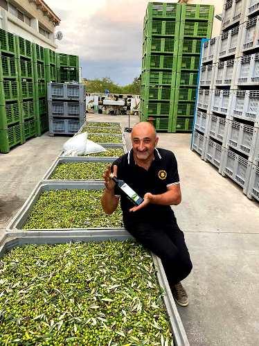 Guido olive oil maker