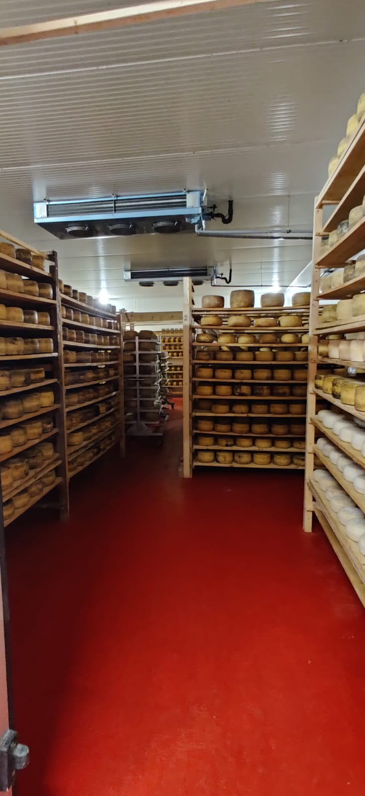 Cheese aging room