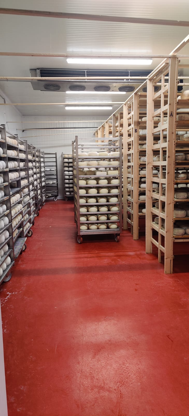Cheeses aging