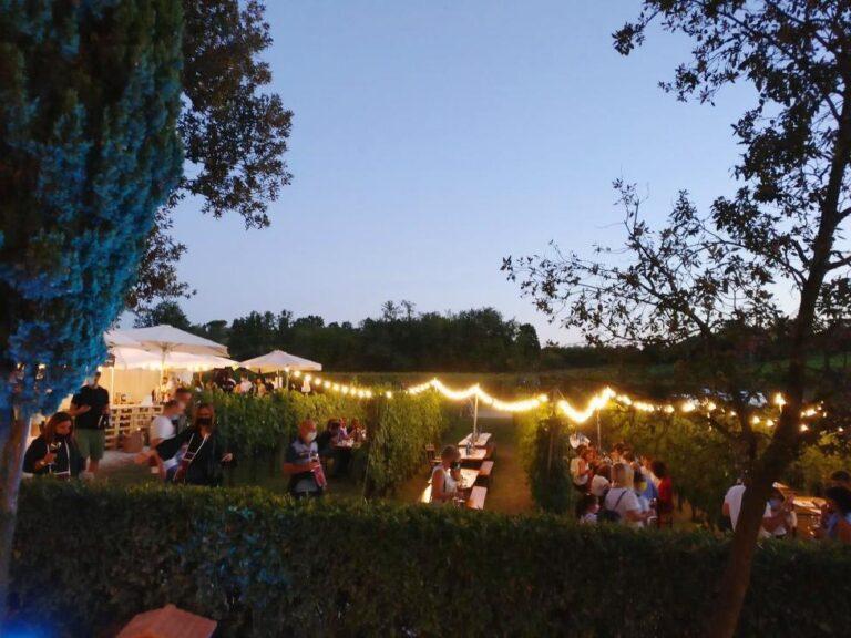 Dinner al fresco in the vineyards