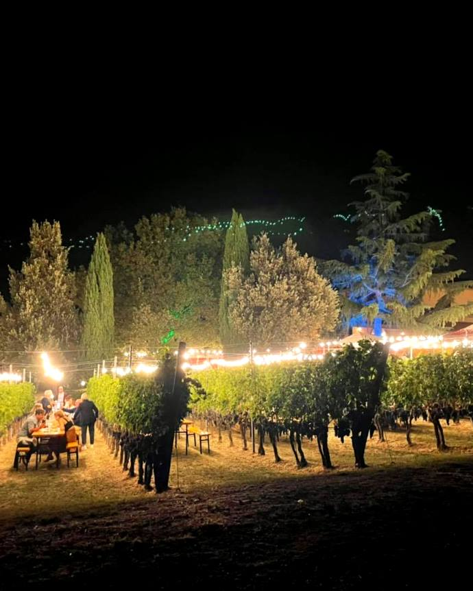Tables in the vineyards illuminate to dine