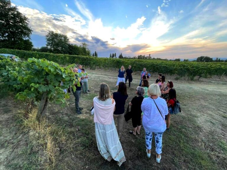 Guided tours to vineyards with San Miniato in the background